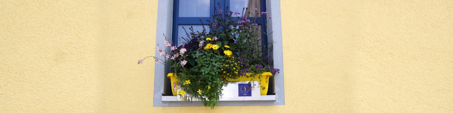 Fenster-Zirndorf